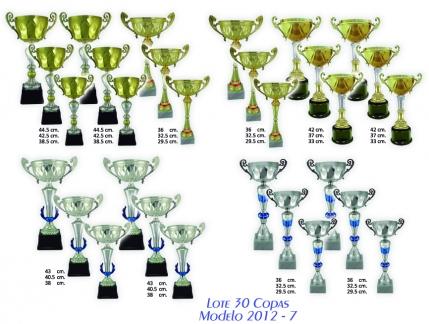 lote 30 copas 2012-7
