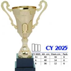 CY 2025