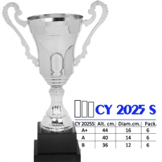 CY 2025s